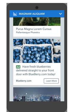 Hình 2.41: Mẫu quảng cáo nguồn cấp dữ liệu – hiển thị mobile